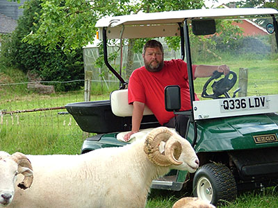 Nigel Woodrup checks his rams in his converted golf buggy